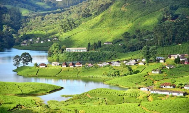 Munnar Alleppey Tour Package 3 Nights 4 Days