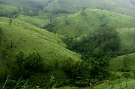 Vagamon Package 2Nights 3 Days