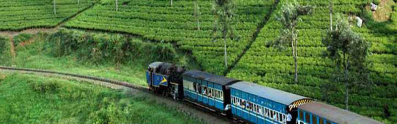 Ooty Tour -Ooty Kotagiri Packages: 4 Days 3 nights