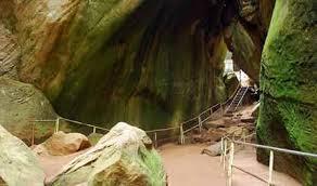 wayanad cave